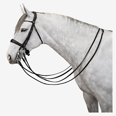 Ergonomic bridle for dressage -
