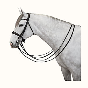 Ergonomic bridle for dressage