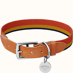 Rocabar dog collar