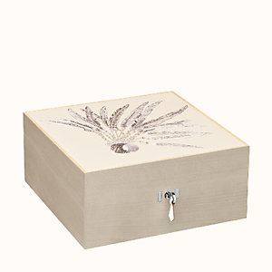 Plumes de Brazil 3 watch box
