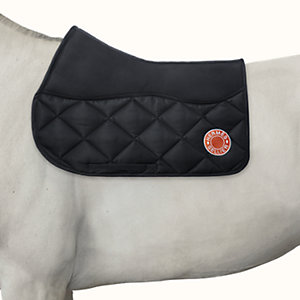 Paddington general purpose saddle pad