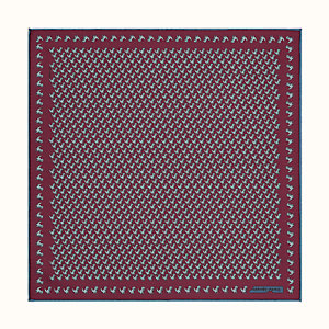 Pas de Lezard pocket square 45